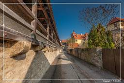 Rothenburg ob der Tauber (0528)