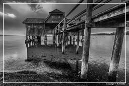Ammersee (494) Inning am Ammersee Black-and-white