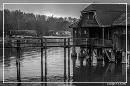 Ammersee (506) Inning am Ammersee Black-and-white