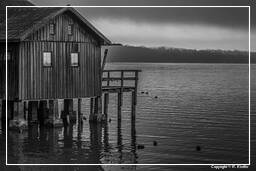 Ammersee (513) Inning am Ammersee Black-and-white