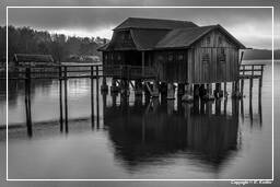 Ammersee (533) Inning am Ammersee Black-and-white