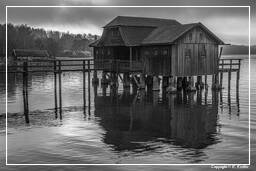 Ammersee (536) Inning am Ammersee Black-and-white