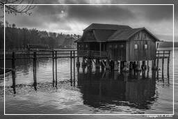 Ammersee (548) Inning am Ammersee Black-and-white