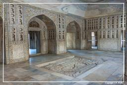 Red Fort of Agra (011)