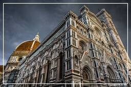 Florence (244)