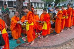 Luang Prabang Alms to the Monks