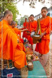 Luang Prabang Alms to the Monks (205)