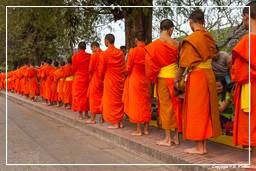 Luang Prabang Alms to the Monks (208)