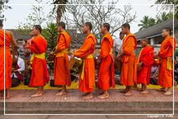Luang Prabang Alms to the Monks (222)