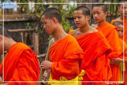 Luang Prabang Alms to the Monks (225)