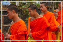 Luang Prabang Alms to the Monks (226)