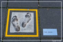 Rotterdam (165) Walk of Fame Europe (Tom Jones)