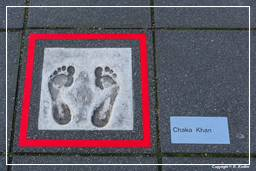 Rotterdam (166) Walk of Fame Europe (Chaka Khan)