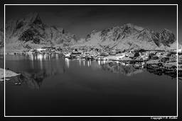 Reine (Lofoten) (237) Norway