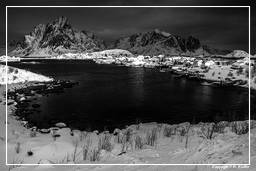 Reine (Lofoten) (531) Norway